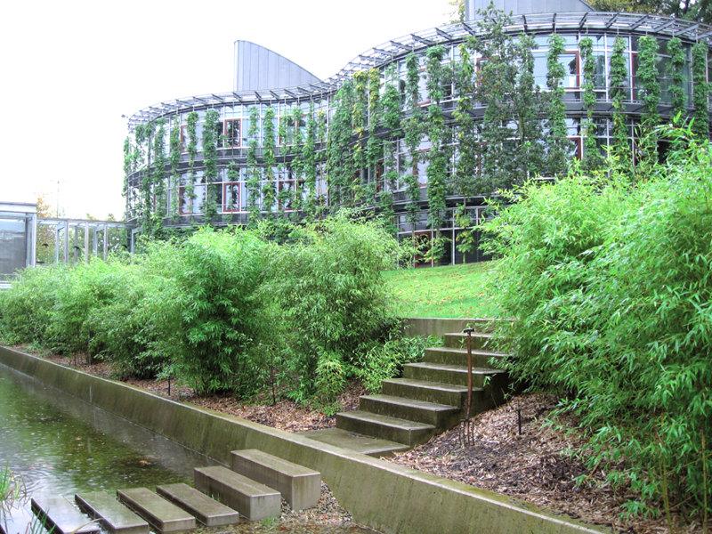 Dach- Und Fassadenbegrünung | Garten- Und Landschaftsbau | Floratec Gemusegarten Auf Dem Dach
