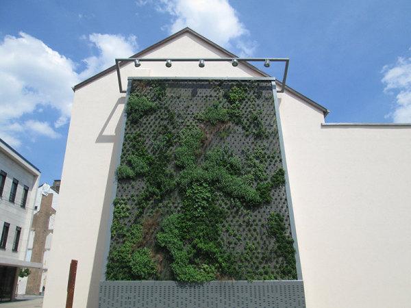 Fassadengarten Dillingen