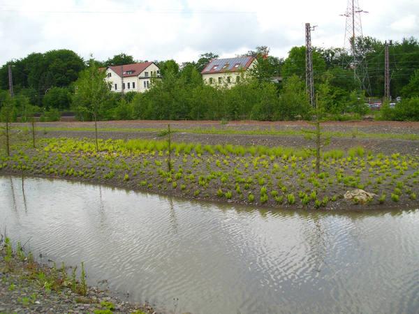 Wassergarten Reden
